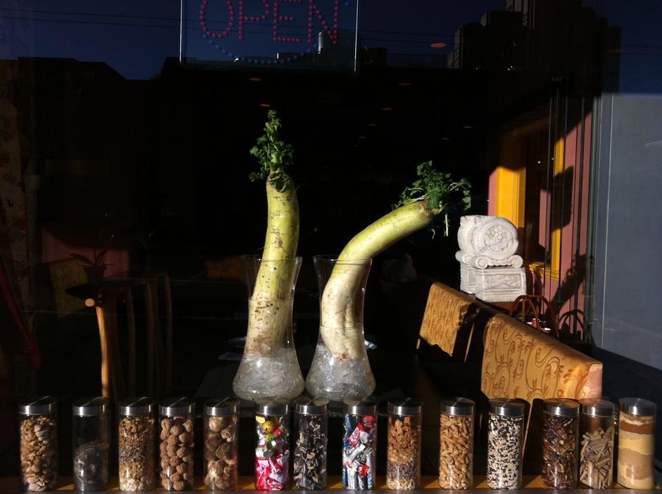 dailkon ikebana for website